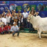 GRAN CAMPEONA DE LA RAZA - XIX EXPOSICIÓN NACIONAL DE GANADO BRAHMAN TUXTLA GUTIERREZ, CHIAPAS 2015