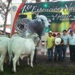 Campeonato de Progenie De Vaca en la Nacional del 2012