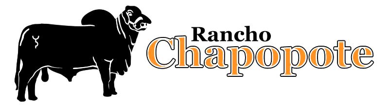 Rancho Chapopote